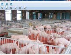 生猪制品安全溯源及客户管理系统